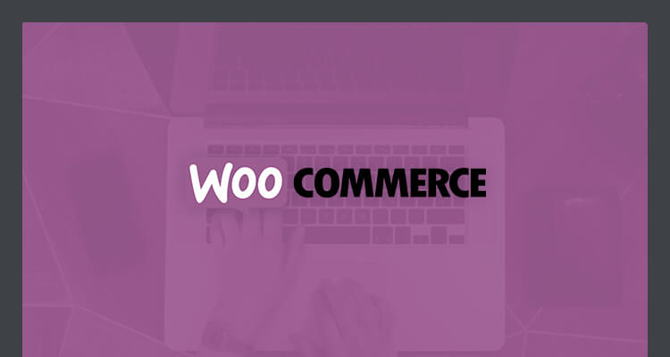 woocommerce how to add search bar in products